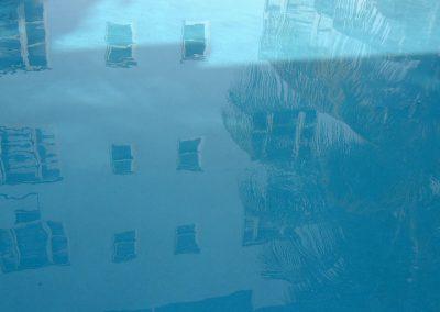 LC Miami blue